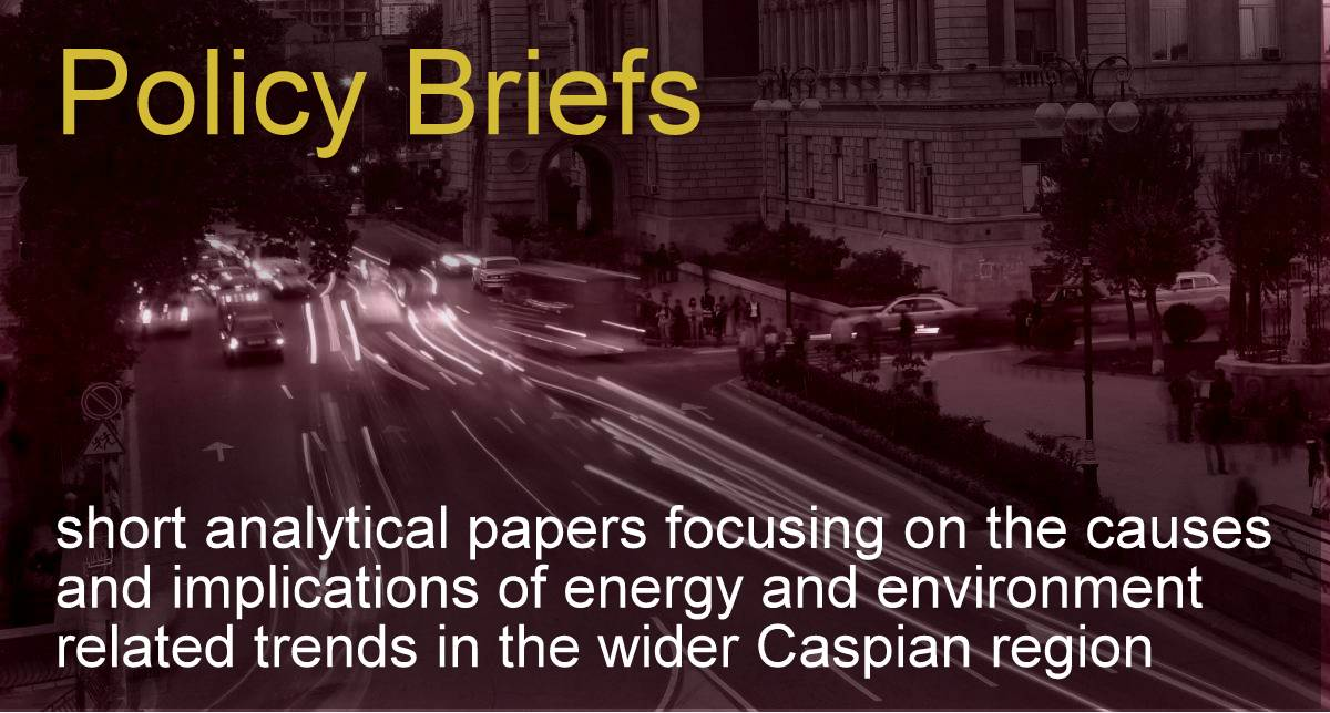 "CCEE Policy Brief Series ""Coordinating The Azerbaijan-Turkmenistan-Turkey Energy Relationship – the Case of the Trans-Caspian Pipeline"" by Alex Jackson"